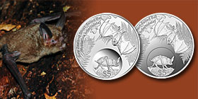 2013 New Zealand Annual Coin